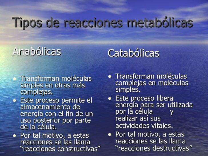 Tipos de reacciones   metabólicas <ul><li>Anabólicas  </li></ul><ul><li>Transforman moléculas simples en otras más complej...