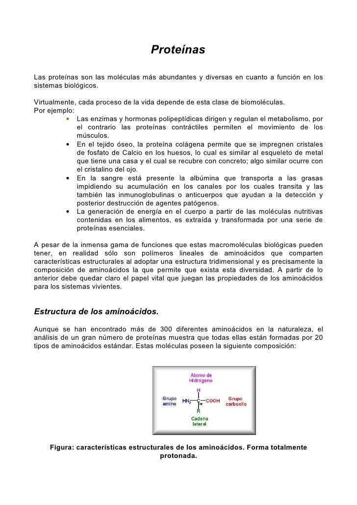 ProteínasLas proteínas son las moléculas más abundantes y diversas en cuanto a función en lossistemas biológicos.Virtualme...