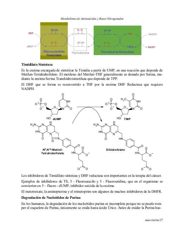 como curar el acido urico de forma natural valores patologicos de acido urico acido urico bajo