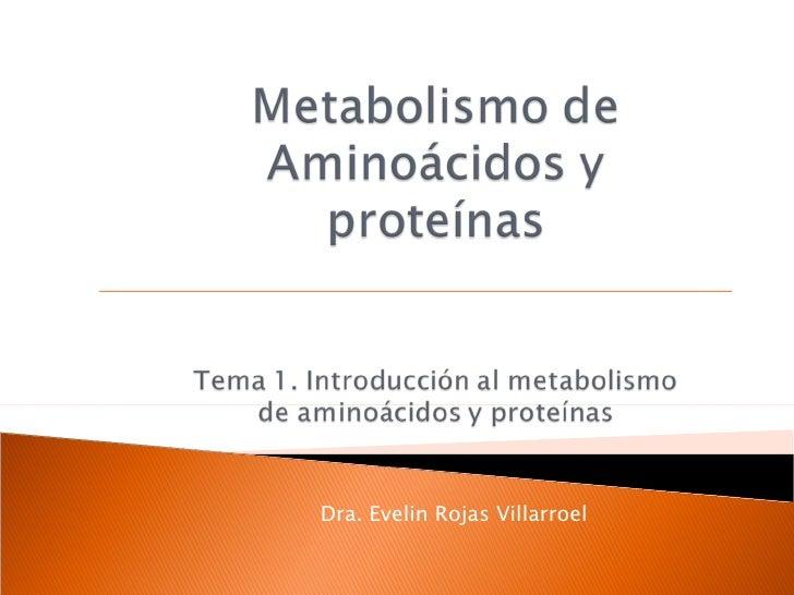 Dra. Evelin Rojas Villarroel