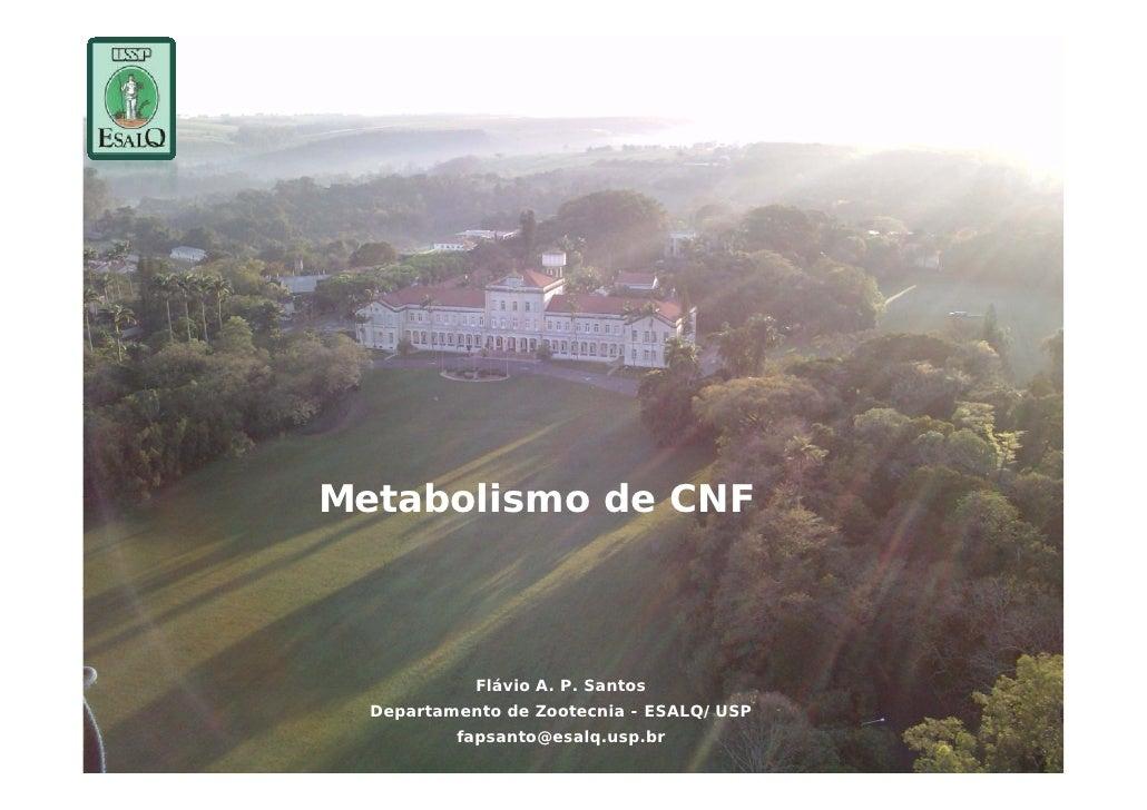 Metabolismo de CNF            Flávio A. P. S t            Flá i A P Santos  Departamento de Zootecnia - ESALQ/USP         ...