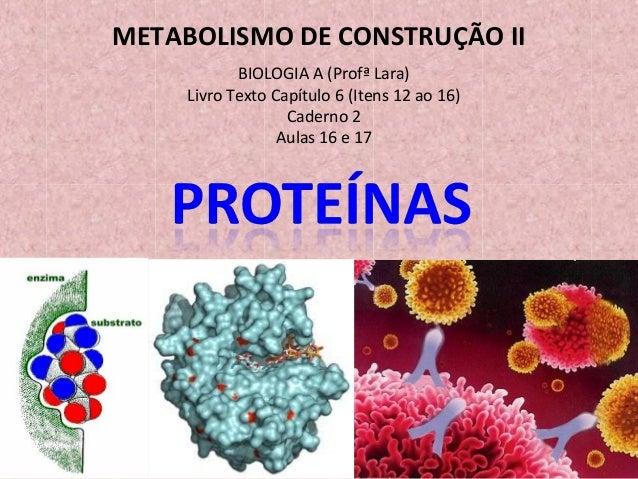 METABOLISMO DE CONSTRUÇÃO II BIOLOGIA A (Profª Lara) Livro Texto Capítulo 6 (Itens 12 ao 16) Caderno 2 Aulas 16 e 17