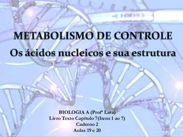 BIOLOGIA A (Profª Lara) Livro Texto Capítulo 7(Itens 1 ao 7) Caderno 2 Aulas 19 e 20