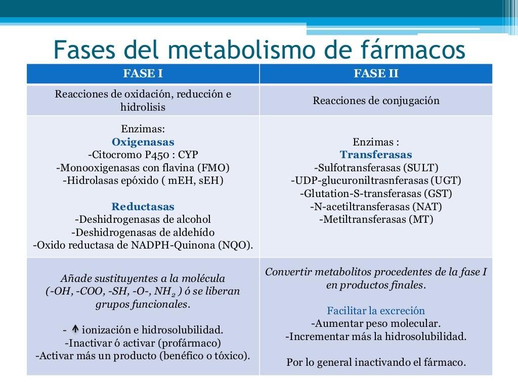 que hacer para acelerar el metabolismo medicamento