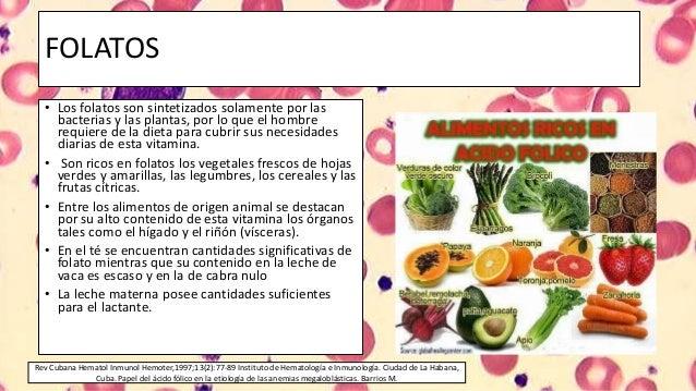 Metabolismo del acido folico y la vitamina b12 - En que alimentos esta la vitamina b12 ...