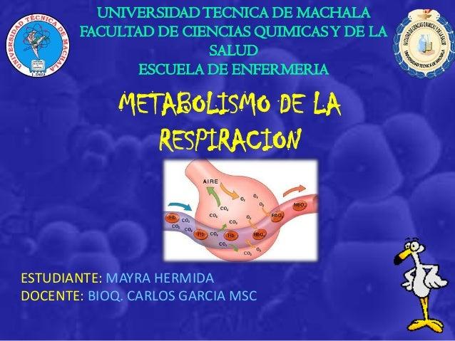 UNIVERSIDADTECNICA DE MACHALA FACULTAD DE CIENCIAS QUIMICASY DE LA SALUD ESCUELA DE ENFERMERIA METABOLISMO DE LA RESPIRACI...