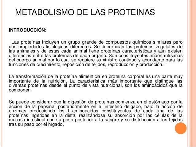 Un curso corto en calorias metabolismo basal