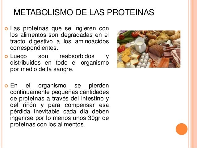 sugerencias de gran alcance en atp metabolismo