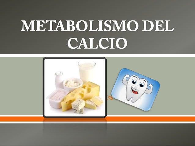 Metabolismo del calcio 4