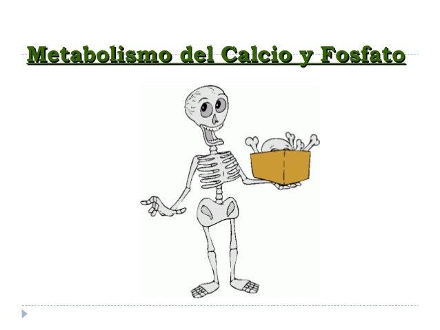 Metabolismo del Calcio y FosfatoMetabolismo del Calcio y Fosfato