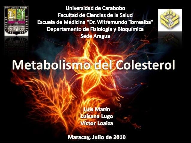 La Síntesis de Colesterol es muy costosa energéticamente En mamíferos es regulada por concentración intracelular, glucagón...
