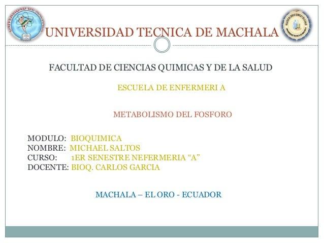 UNIVERSIDAD TECNICA DE MACHALA FACULTAD DE CIENCIAS QUIMICAS Y DE LA SALUD ESCUELA DE ENFERMERI A METABOLISMO DEL FOSFORO ...
