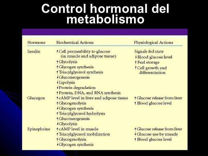 dieta baja en colesterol y trigliceridos en la forma natural