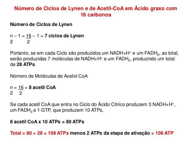 Número de Ciclos de Lynen e de Acetil-CoA em Ácido graxo com 16 carbonos Número de Ciclos de Lynen n – 1 = 16 – 1 = 7 cicl...