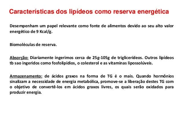 Características dos lipídeos como reserva energética Desempenham um papel relevante como fonte de alimentos devido ao seu ...