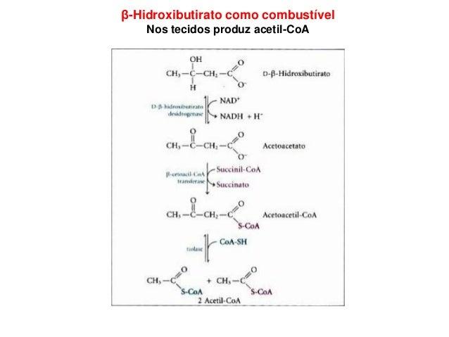 Biossíntese de Ácidos Graxos Ocorre no citoplasma Acetil-CoA é gerado na mitocôndria pela: •descarboxilação de piruvato; •...