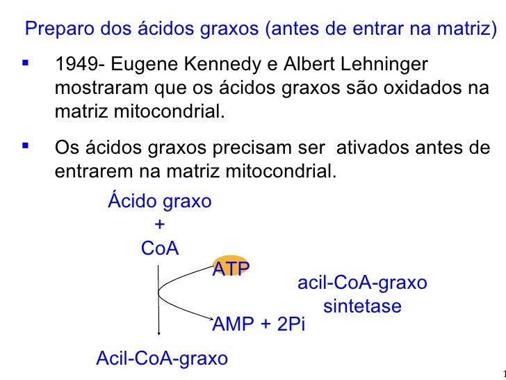 <ul><li>Preparo dos ácidos graxos (antes de entrar na matriz) </li></ul><ul><li>1949- Eugene Kennedy e Albert Lehninger mo...