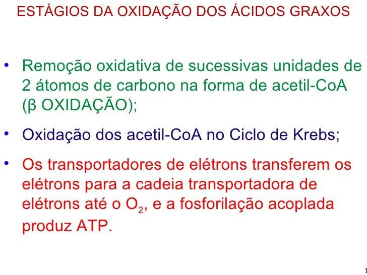 <ul><li>ESTÁGIOS DA OXIDAÇÃO DOS ÁCIDOS GRAXOS </li></ul><ul><li>Remoção oxidativa de sucessivas unidades de 2 átomos de c...