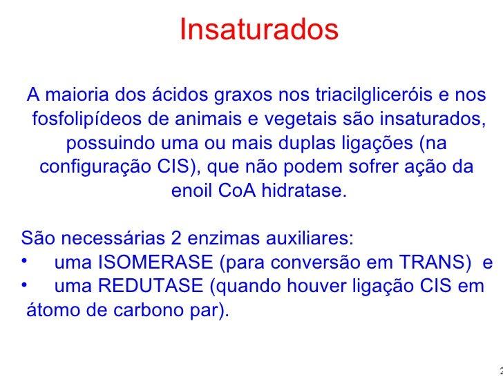 <ul><li>Insaturados </li></ul><ul><li>A maioria dos ácidos graxos nos triacilgliceróis e nos  </li></ul><ul><li>fosfolipíd...
