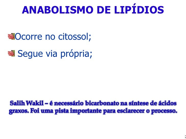 ANABOLISMO DE LIPÍDIOS <ul><li>Ocorre no citossol; </li></ul><ul><li>Segue via própria; </li></ul>
