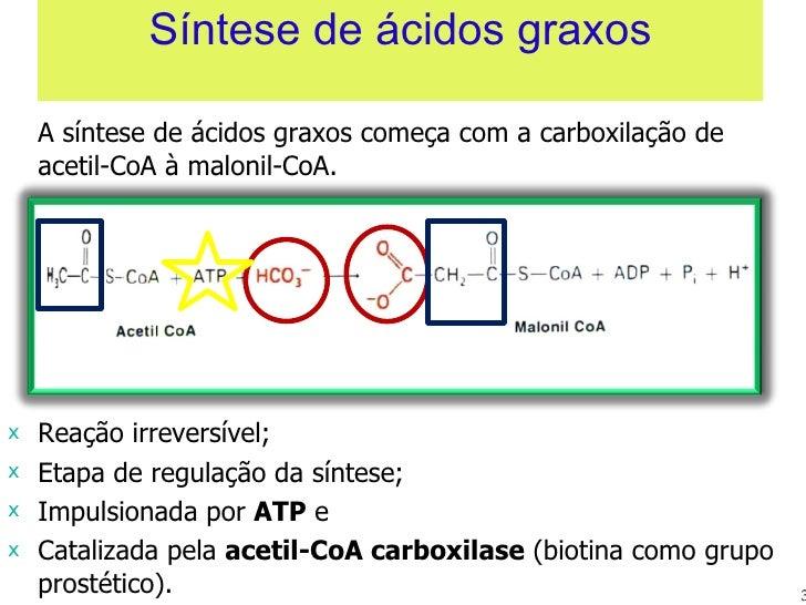 Síntese de ácidos graxos <ul><li>A síntese de ácidos graxos começa com a carboxilação de acetil-CoA à malonil-CoA. </li></...