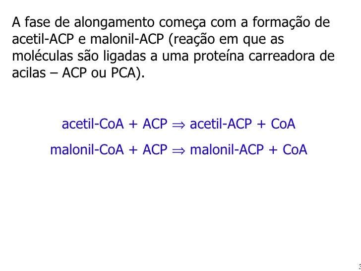 A fase de alongamento começa com a formação de acetil-ACP e malonil-ACP (reação em que as moléculas são ligadas a uma prot...