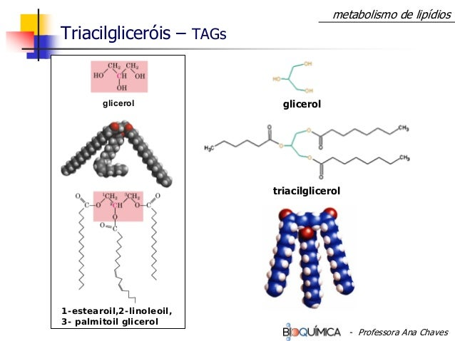Triacilgliceróis – TAGs triacilglicerol glicerolglicerol 1-estearoil,2-linoleoil, 3- palmitoil glicerol metabolismo de lip...