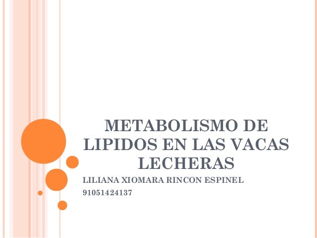 METABOLISMO DE LIPIDOS EN LAS VACAS LECHERAS LILIANA XIOMARA RINCON ESPINEL 91051424137