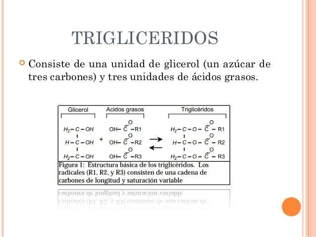 Metabolismo de lipidos en las vacas lecheras Slide 3