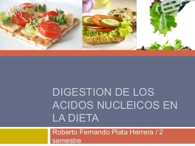 DIGESTION DE LOSACIDOS NUCLEICOS ENLA DIETARoberto Fernando Plata Herrera / 2semestre
