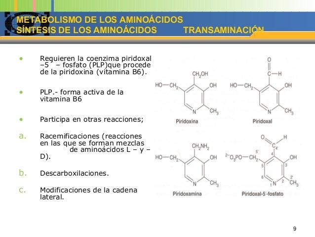 metabolismo de acidos grasos opciones