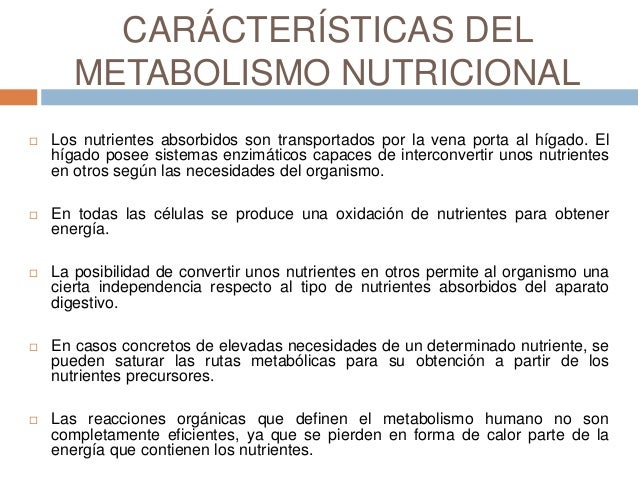 METABOLISMO DE LOS NUTRIENTES