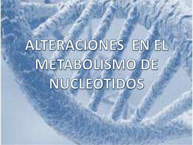 BIOSÍNTESIS DE NOVO VIAS DE RECUPERACION PRECURSORES CO2, ASPARTATO, GLICINA, GLUTAMINA, FORMILO,