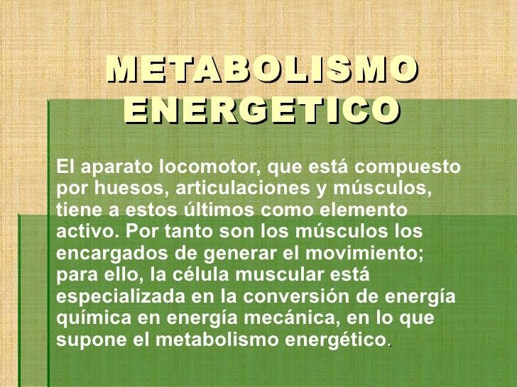 METABOLISMO ENERGETICO El aparato locomotor, que está compuesto por huesos, articulaciones y músculos, tiene a estos últim...