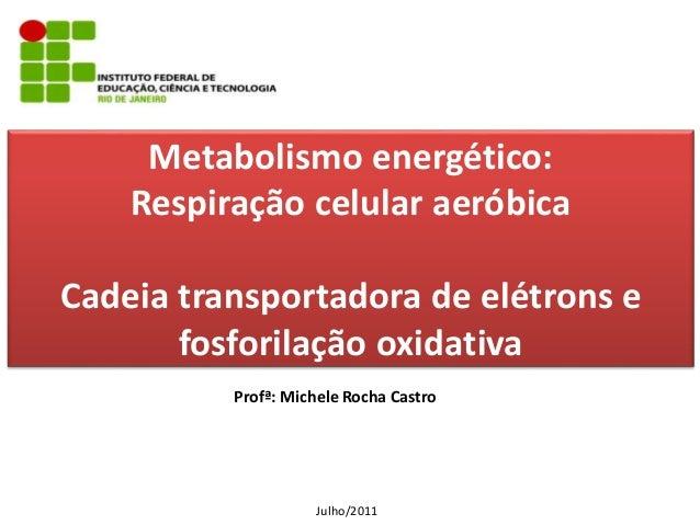 Metabolismo energético: Respiração celular aeróbica Cadeia transportadora de elétrons e fosforilação oxidativa Profª: Mich...