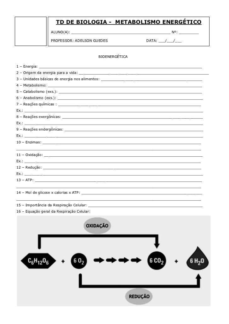 TD DE BIOLOGIA - METABOLISMO ENERGÉTICO                   ALUNO(A): _____________________________________________ Nº: ____...
