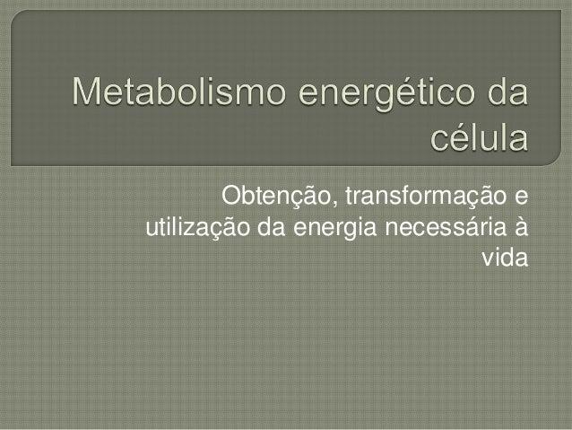 Obtenção, transformação eutilização da energia necessária à                             vida