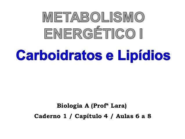 Biologia A (Profª Lara) Caderno 1 / Capítulo 4 / Aulas 6 a 8