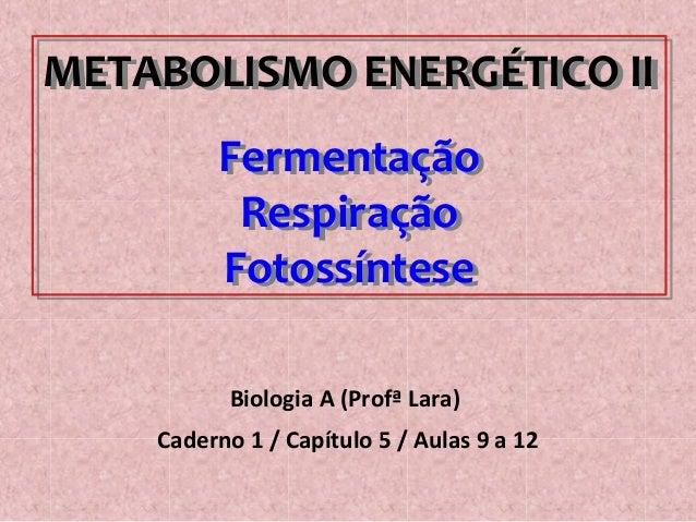 METABOLISMO ENERGÉTICO II Fermentação Respiração Fotossíntese METABOLISMO ENERGÉTICO II Fermentação Respiração Fotossíntes...