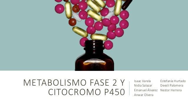 METABOLISMO FASE 2 Y  CITOCROMO P450  Isaac Varela  Nidia Salazar  Emanuel Álvarez  Anwar Olvera  Estefanía Hurtado  Deesl...