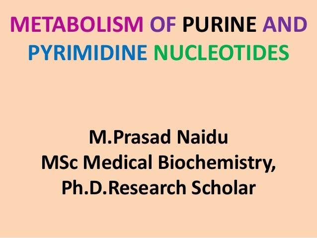 METABOLISM OF PURINE AND PYRIMIDINE NUCLEOTIDES M.Prasad Naidu MSc Medical Biochemistry, Ph.D.Research Scholar