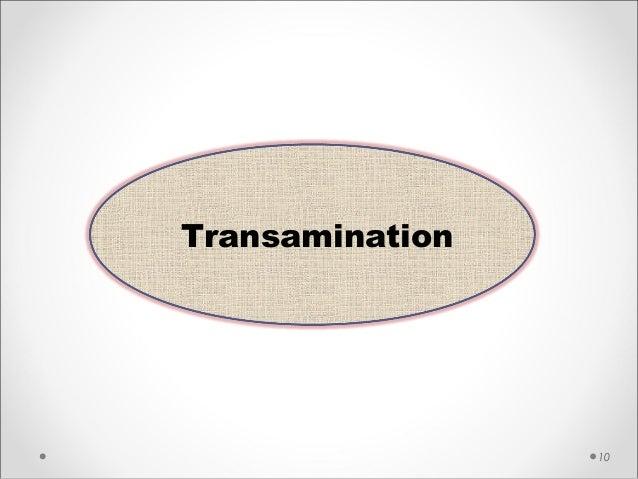 10 Transamination