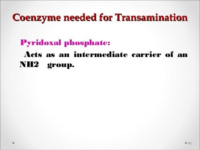 Coenzyme needed for TransaminationCoenzyme needed for Transamination 16 Pyridoxal phosphate: Acts as an intermediate carri...
