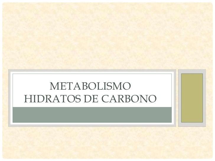 Metabolismo HC