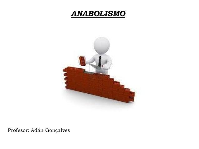 ANABOLISMO Profesor: Adán Gonçalves