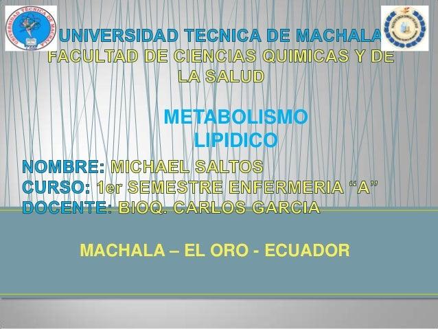 METABOLISMO LIPIDICO  MACHALA – EL ORO - ECUADOR
