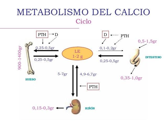 Dietas Seis Trucos Efectivos Parа Acelerar Tu Metabolismo Y Adelgazar Más Fácilmente