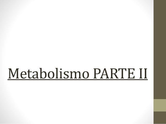 Metabolismo PARTE II