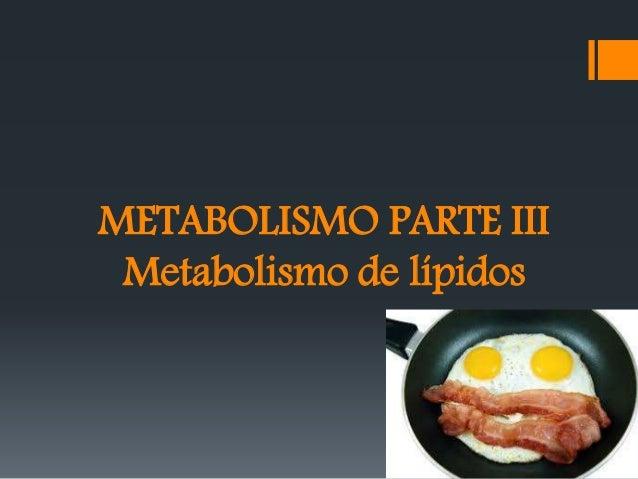 METABOLISMO PARTE III Metabolismo de lípidos