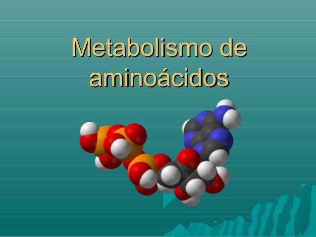 Metabolismo deMetabolismo de aminoácidosaminoácidos